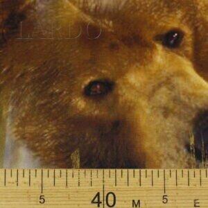 Атлас шёлк медведи купон Alta Moda
